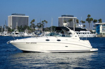 Rent a Searay Cruiser